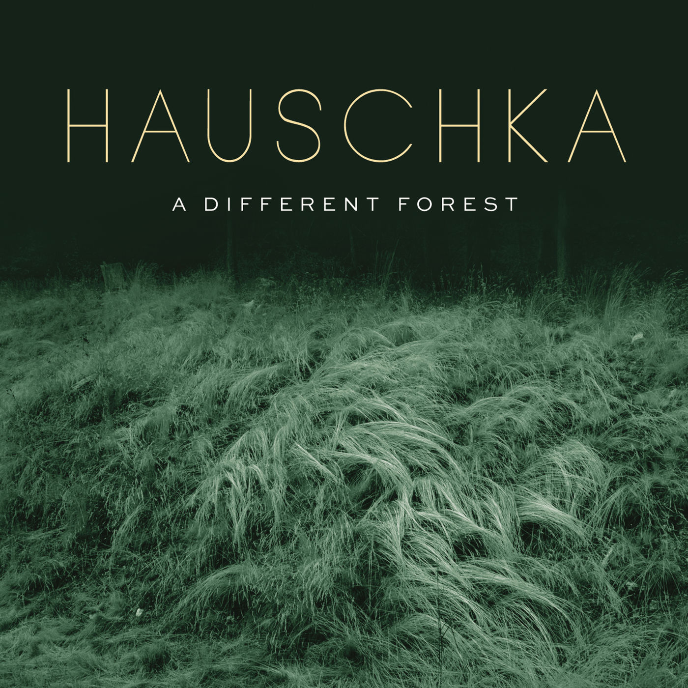 Hauschka - A Different Forest (2019)