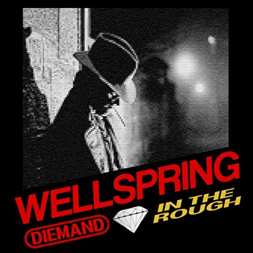 Diemand In The Rough - Wellspring (2019)