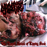 Lymphocytic - The Rancid Sound Of Ripping Flesh (2019)