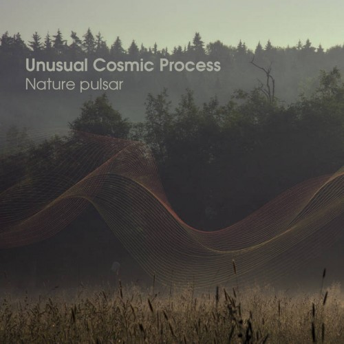 Unusual Cosmic Process - Nature Pulsar (2019)