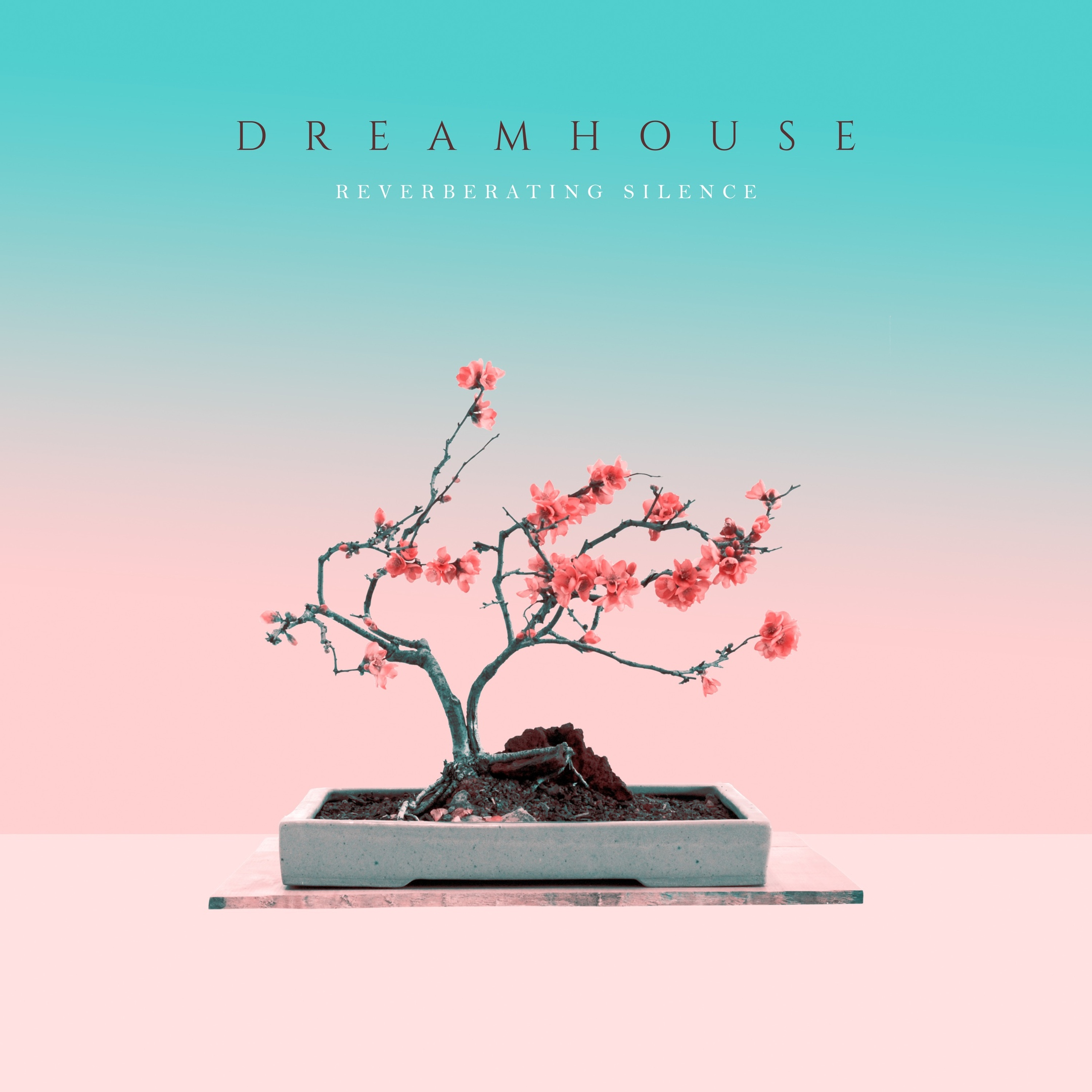 DreamHouse - Reverberating Silence (2019)