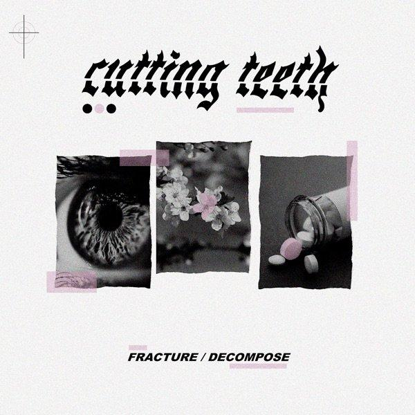 Cutting Teeth - Fracture / Decompose (EP) (2019)