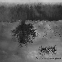 Metalblack - Souls Of The Burning Woods (2019)