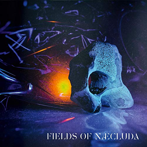 Fields Of Naecluda - Fields Of Naecluda (2019)