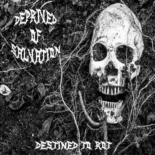 Deprived of Salvation - Destined to Rot (EP) (2019)